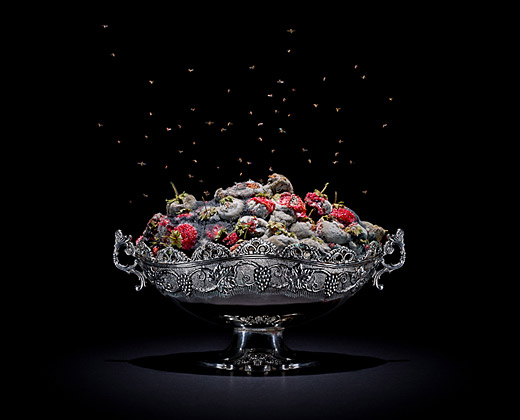 Klaus Pichler's quite beautiful gallery of rotten food from around the globe