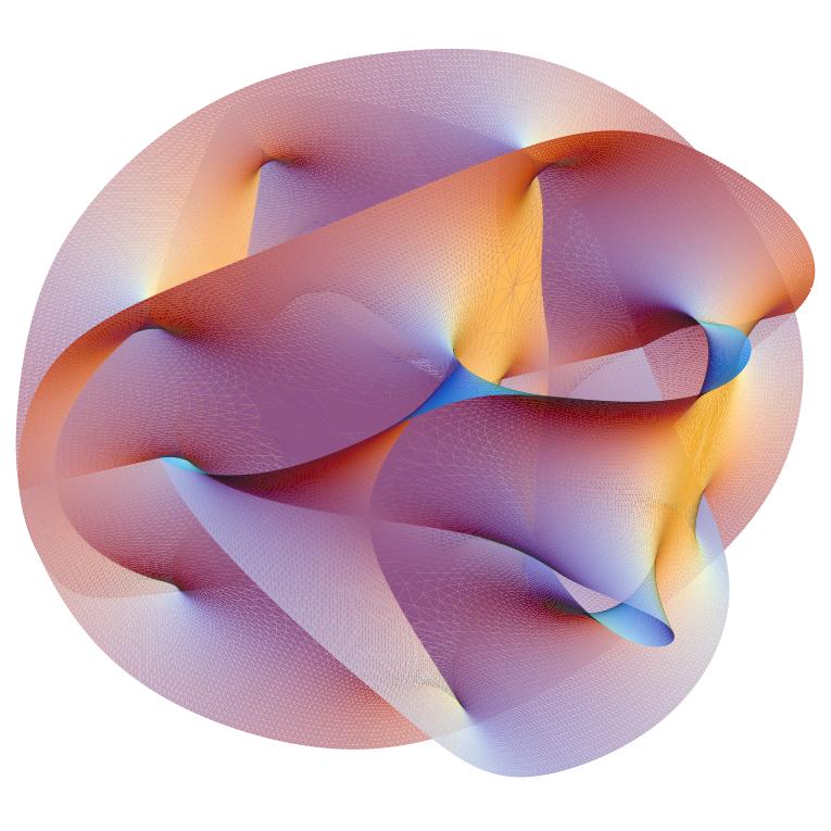 This is a 'Calabi–Yau manifold' — looks pretty, eh?